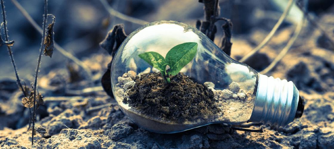 Entenda o que é energia verde, suas vantagens e como adquirir