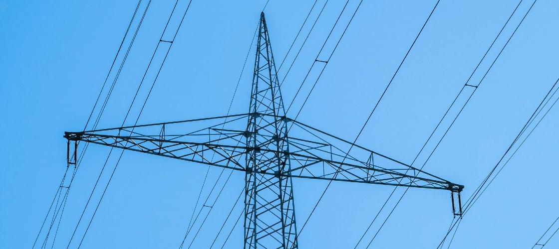 informações sobre a função do CNPE no setor elétrico brasileiro